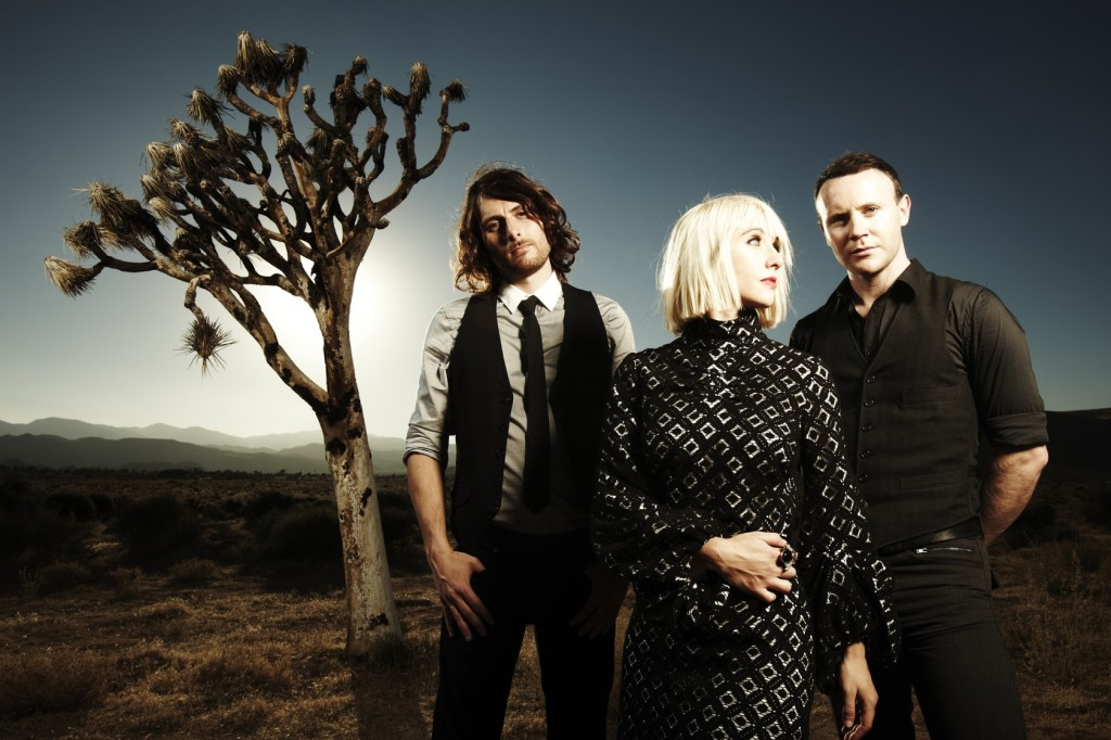 joy-formidable-web